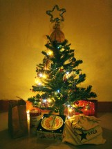 Christmas Tree put up in less than 20 minutes. The room was cozied-up with this tree.